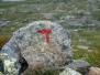 Hardangervidda 2013 - Tag 8