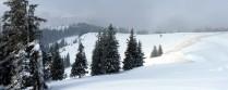 Auf den Schönkahler – das erste Mal auf Schneeschuhen!