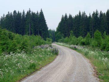 Beste Wegeverhältnisse auf dem Rennstein