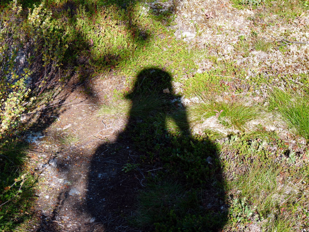 Kungsleden_2015_Tag_7_03