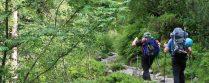 Stubaier Alpen 2016 – Tag 1: Start zur Sulzenauhütte