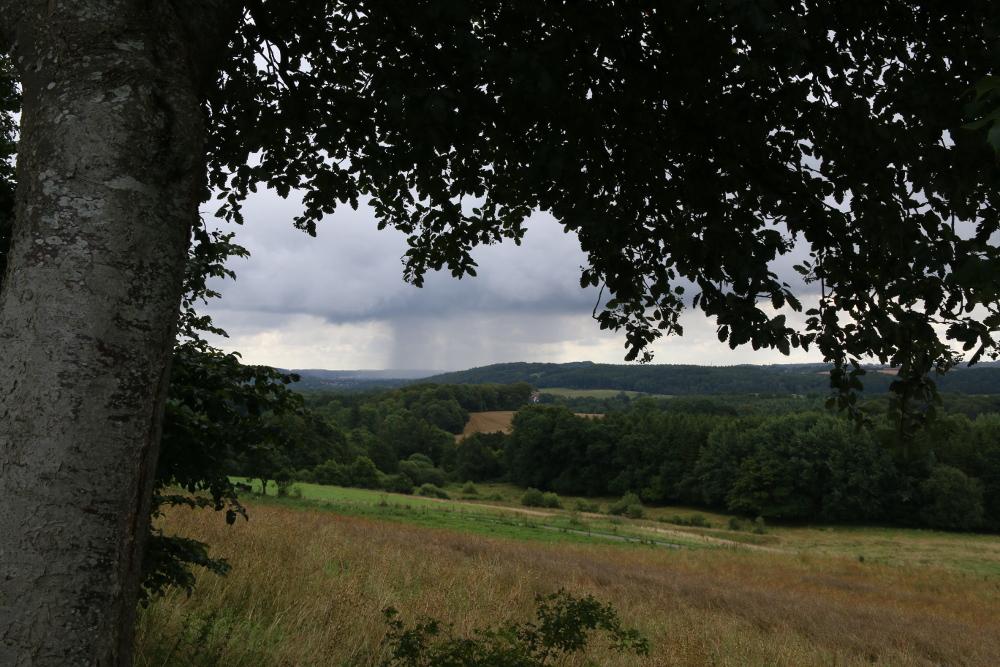 Regengüsse kann ich heute vor allem aus der Ferne beobachten.