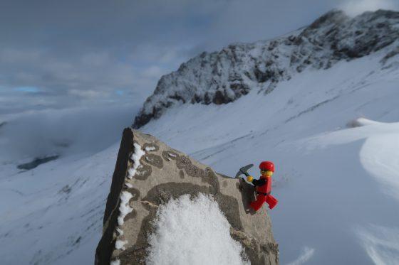 Björn beim Klettern,...