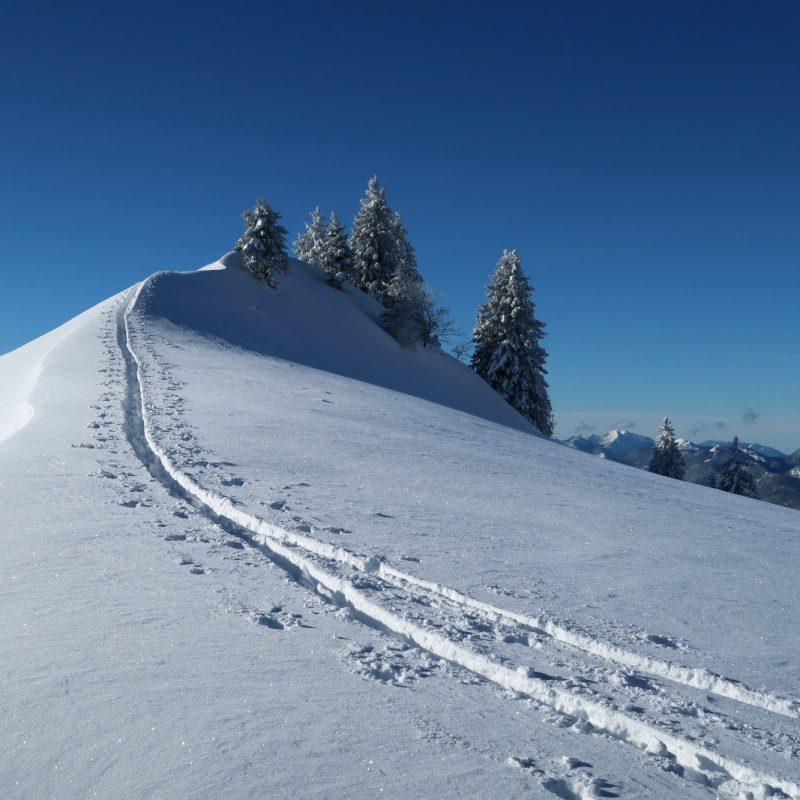 Bei 40cm Neuschnee hinauf auf den Sonnberg