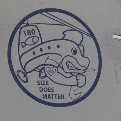 Manchmal kommts doch auf die Größe an, z.B. bei einer CH-47 Chinook