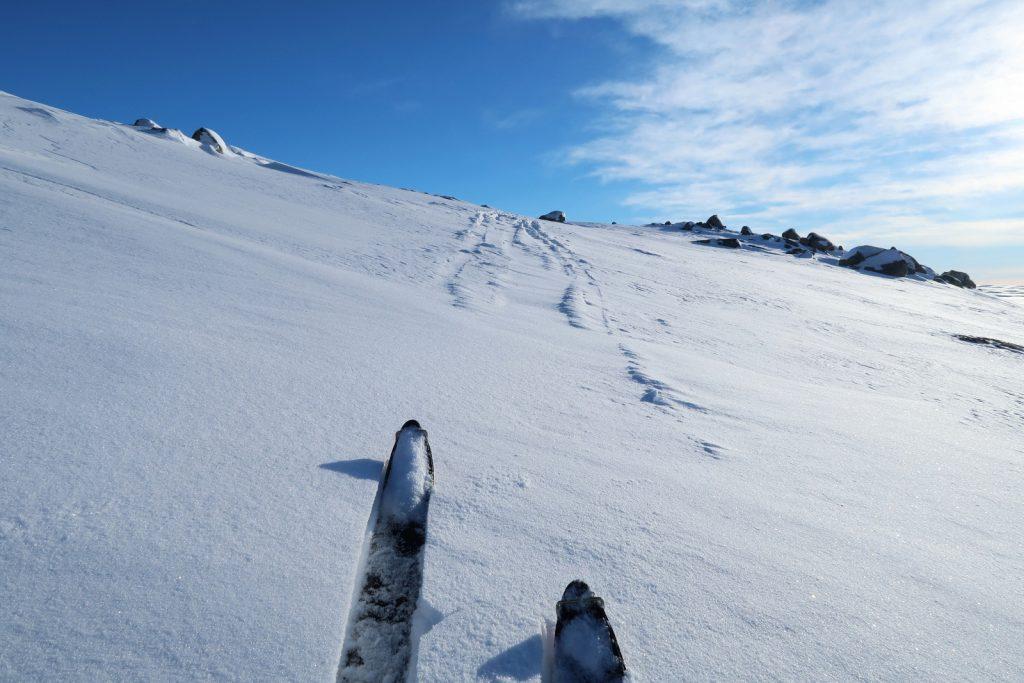 Noch mit Steigfellen entlang der Spur der zwei Norwegerinnen
