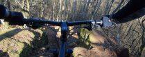 Tolle Trails im Pfälzerwald!